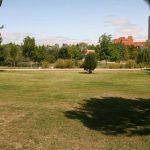 Jardín Botánico Alfonso XIII