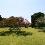 Jardin de la Facultad de Agrónomos