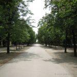 Paseo de Fernan Nuñez