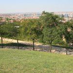 Vistas desde el Cerro del Tio Pio