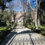 Jardin del Palacio de Buenavista