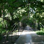 Interior del Jardín Botánico