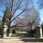 Jardin botánico en invierno