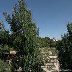 Rosaleda del Parque del Oeste